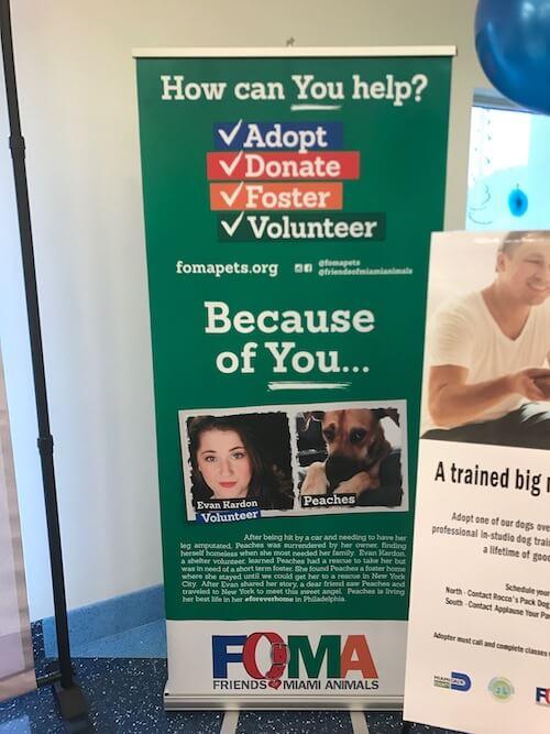 Volunteers 4 - FoMA Pets