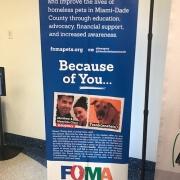 Volunteers 5 - FoMA Pets