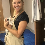 Help Shelter Pets 16 - FoMA Pets