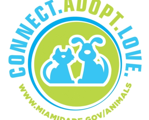 Virtual Adoption Events For Dogs - FoMA