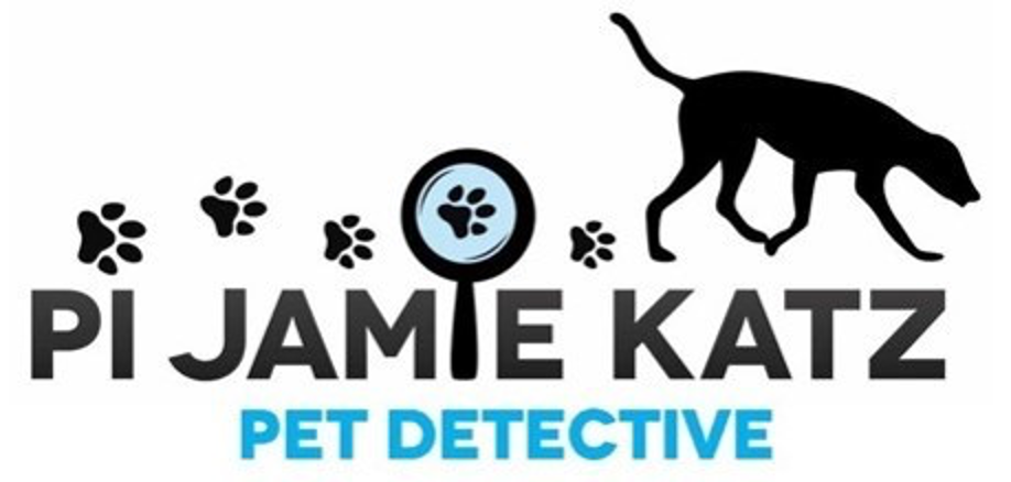 What to do if You Lose Your Pet - Pet Detective