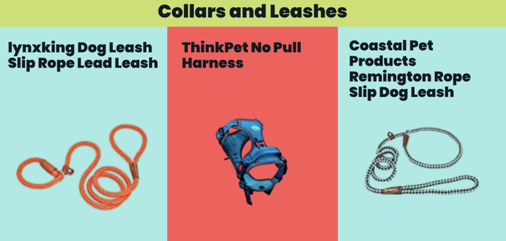 Collars and Leashes - FoMA Pets
